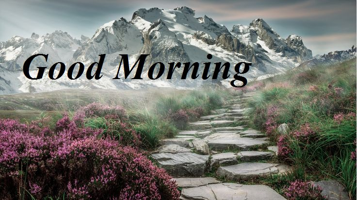 Awesome Nature Good Morning Hd Full Pics
